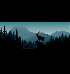 silhouette deer in hill at night vector image