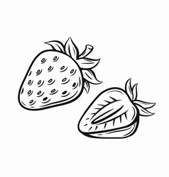 strawberry black vector image