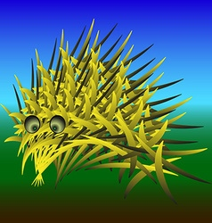 Abstract urchin vector image