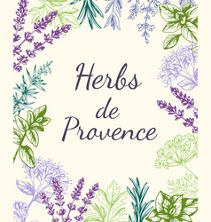 Background with provencal spices and herbs vector