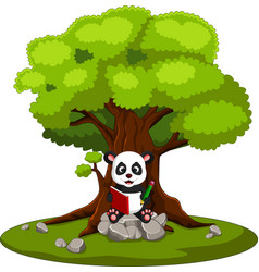 Panda reading book and sitting on the stone vector