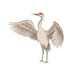 Red-crowned crane standing with wide open wings vector
