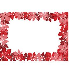 red leaf frame vector image
