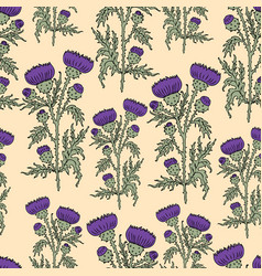 Seamless background of the flowering thistles vector