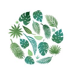 summer tropical paradise beach vector image