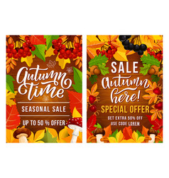 thanksgiving day sale posters vector image