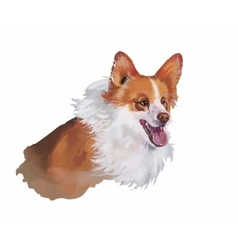 Welsh corgi pembroke Animal dog watercolor vector