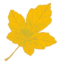 Yellow leaf vector