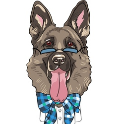 hipster dog German shepherd breed vector image vector image