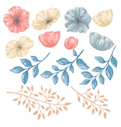 floral isolated elements vector image vector image
