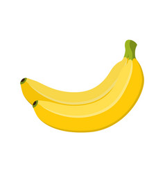 banana bunch yellow fruit cartoon style vector image