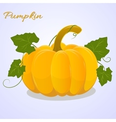 Bright pumpkin with leaves on blue background vector image