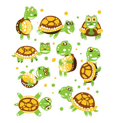 Cartoon funny turtle set for label design vector