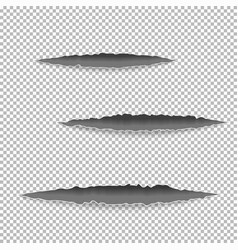 claws scratches on paper vector image