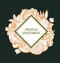 doodle sketched fruits and vegetables vegan vector image