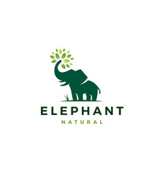 elephant leaf leaves tree logo icon vector image