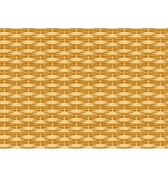 Seamless braided background Wicker straw Woven vector image