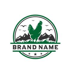 vintage chicken livestock logo design template vector image