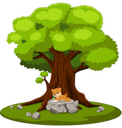 chipmunk writing letter and sitting on the stone vector image