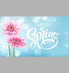 gerbera flower background and spring lettering vector image vector image