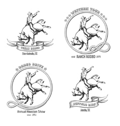 Rodeo emblem set vector