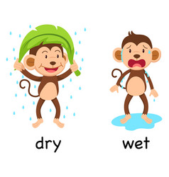 opposite words dry and wet vector image