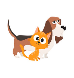 basset hound dog and red cat kitten characters vector image vector image