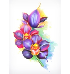 Beautiful orchid watercolor painting mesh vector image vector image