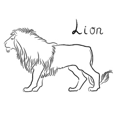 Black graceful Lion contour vector image