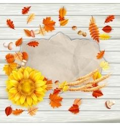 Colorful leaves background EPS 10 vector image