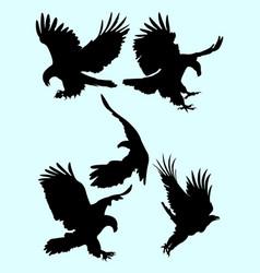 eagle silhouette set vector image