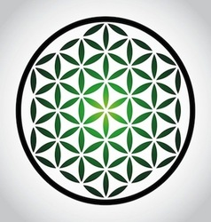 Flower Of Life vector