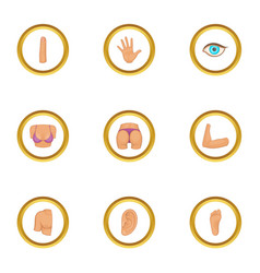 parts of body icons set cartoon style vector image