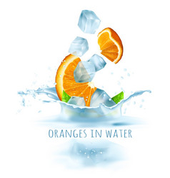 Ripe fresh oranges and ice vector