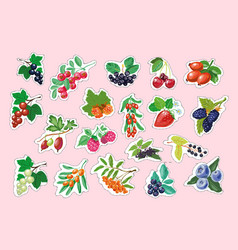 Set of berry stickers vector