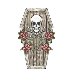 skull with bones and roses on coffin lid vector image