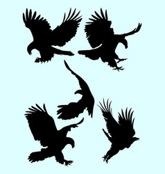 the eagle silhouette set vector image
