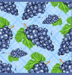 watercolor grapes seamless pattern watercolor vector image