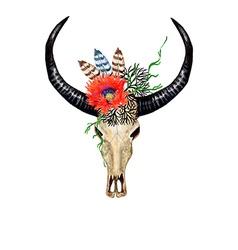 Bull skull poppy vector