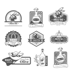 Set with labels on the theme olive oil vector image vector image
