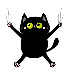 black cat nail claw scratch glass screaming vector image