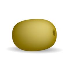 brown fresh bio kiwi mockup realistic style vector image
