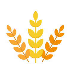 Ears of wheat agriculture food natural vector