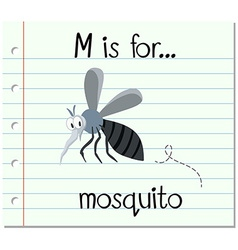 Flashcard letter M is for mosquito vector