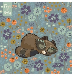 Funny little raccoon sleeping in a meadow vector image
