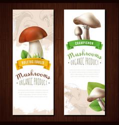 organic mushrooms vertical banners vector image