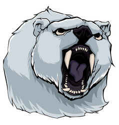 Polar bear angry vector