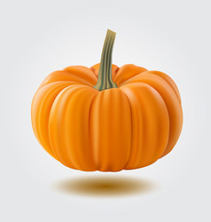 pumpkin isolated on white realistic vector image