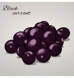 Cartoon sweet black currant on grey background vector image
