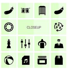 14 closeup icons vector image